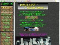 WILD LIFE ・「 TEAM MKW 」