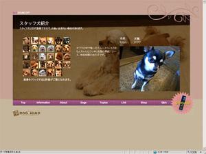 20070225-2.jpg