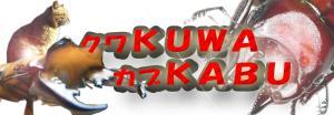 banner-kuwakuwakabukabu.jpg